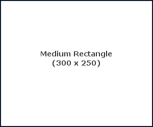 Medium Rectangle (300 x 250)